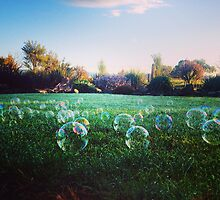 Bubbles by Sarah Barclay