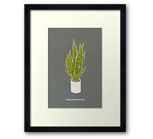 Sansevieria Trifasciata (charcoal gray with text) Framed Print