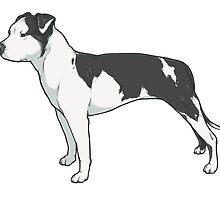 Staffordshire Terrier (black and white) by lauren elizabeth
