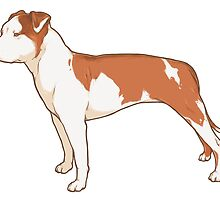 Staffordshire Terrier (red and white) by lauren elizabeth