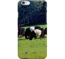 Belted Galloways iPhone Case/Skin
