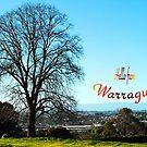 A view over Warragul, Gippsland #2 by Bev Pascoe