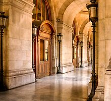 Stunning Architecture at the Paris Opera in Paris by Elana Bailey