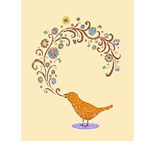 Birdsong Photographic Print