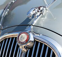 Jaguar 3,8 S, 1966 by Andreas Theologitis
