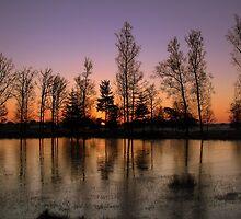 Glowing Morning  by ienemien