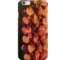 Hot Pink Lupines From My Mother's Garden - Take 2 iPhone Case/Skin