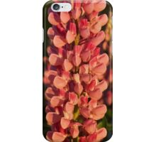 Hot Pink Lupines From My Mother's Garden iPhone Case/Skin