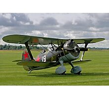 Polikarpov I-15bis Chaika 4439 white 19 Photographic Print