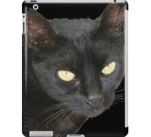 Black Cat Isolated on Black Background iPad Case/Skin