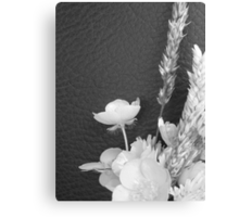 BLACK AND WHITE BUTTERCUP Canvas Print