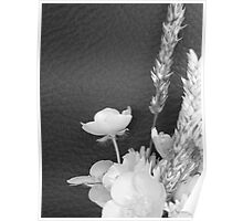 BLACK AND WHITE BUTTERCUP Poster
