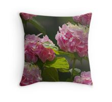 hydrangea in the garden Throw Pillow