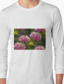 hydrangea in the garden Long Sleeve T-Shirt