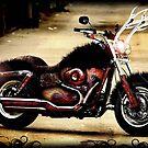 Wild Moto by tweek