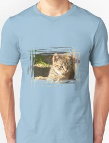 Funny striped kitten 4 T-Shirt