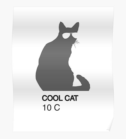 Cool Cat Color  Poster