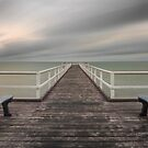 I've Got Sunshine on a Cloudy Day - Hervey Bay Qld Australia by Beth  Wode