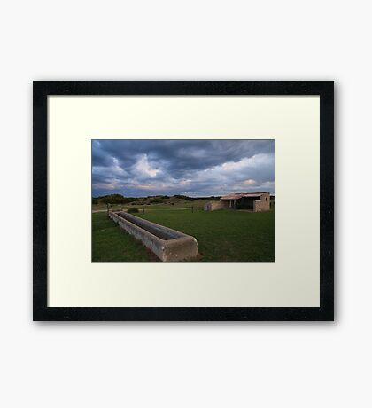 Old Basham's Beach Cow Shed Framed Print
