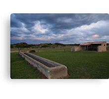 Old Basham's Beach Cow Shed Canvas Print
