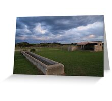 Old Basham's Beach Cow Shed Greeting Card