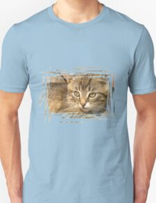 Funny striped kitten 5 T-Shirt