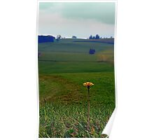 Dandelion with some scenery behind | landscape photography Poster