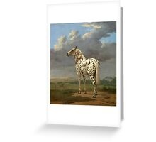 "The ""Piebald"" Horse - Paulus Potter - ca.  1640 Greeting Card"