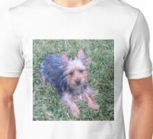 AST puppy laying Unisex T-Shirt