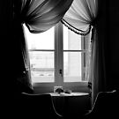 ROOM WITH A VIEW by June Ferrol