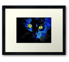 Marley The Cat Portrait With Striking Yellow Eyes Framed Print