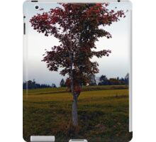 Tree in indian summer style dress | landscape photography iPad Case/Skin