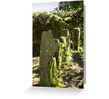 Historic markers Greeting Card