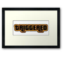 TRIGGERED Framed Print