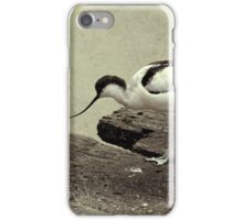 Avocet iPhone Case/Skin