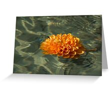 Floating Autumn - Chrysanthemum Blossom in the Fountain Greeting Card