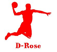 D-Rose Shadow Design Photographic Print
