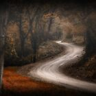 THE ROAD LESS TRAVELED by redandrobbin