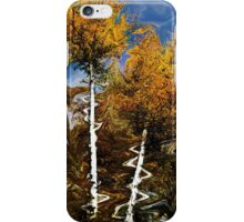 Abstraction of Fall iPhone Case/Skin