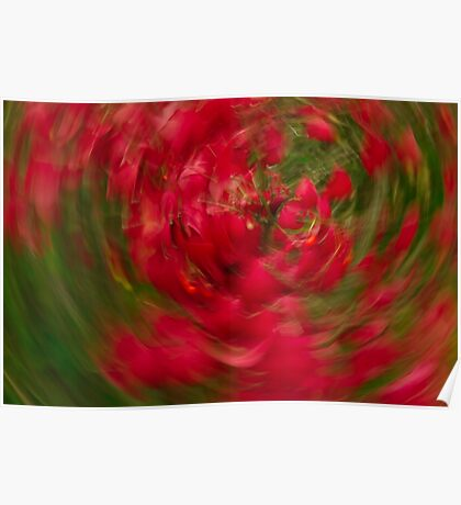 abstract art in nature red and green Poster