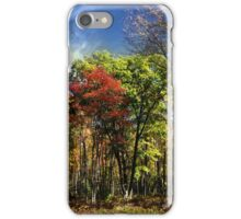 Fall Abstract Elk County iPhone Case/Skin