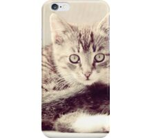 Pretty Striped Kitten iPhone Case/Skin