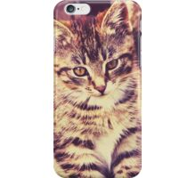 Pretty Striped Kitten 2 iPhone Case/Skin