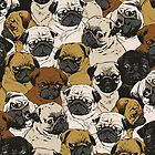 Pugs by OuttaWhack