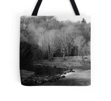 Trees in winter Tote Bag