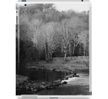 Trees in winter iPad Case/Skin
