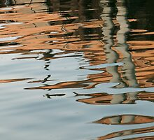 Copper Reflections by SRowe Art