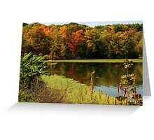 Autumnal colours in upstate New York Greeting Card