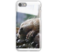 Sleepy otter iPhone Case/Skin