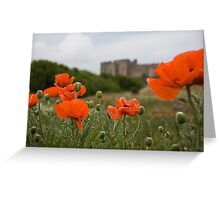 Poppies and a castle Greeting Card